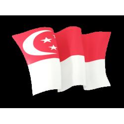 Singapore Incorporation (LTD)